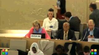 25th Session of the Human Rights Council, Item 2