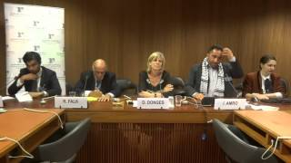 Side-event: Human Rights in Palestine, 11 June 2013, Issa Amro