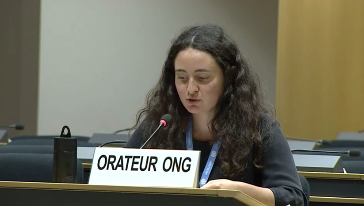 45th Session UN Human Rights Council - The Responsibility of Politicians in Fighting Against Racism - Diane Gourdain
